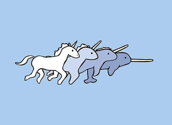 fotu_extern_unicorn-narwhal